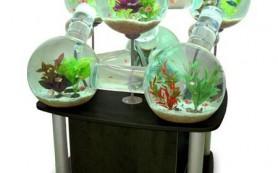 Особенности установки декоративного аквариума в жилом пространстве