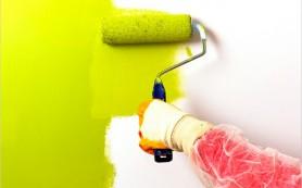 Покраска стен: 10 ошибок, о которых вы должны знать