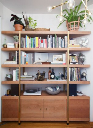Лучшие места в доме для больших растений