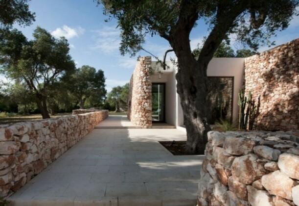 Дом в оливковой роще