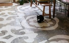 Красим деревянный пол