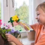 Как выбрать окна для детской комнаты?