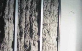 Особенности использования льна в интерьере