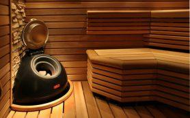 Борьба с грибком в бане
