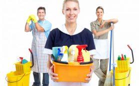 Клининг. Преимущества чистого дома