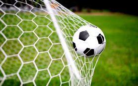 Польза метания мяча для детей