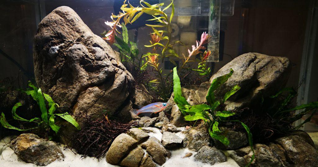 Необходимые приборы для аквариума.