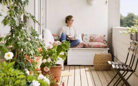 Спальня, гостиная : выбираем идеальное растение для каждой комнаты