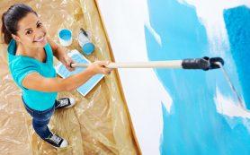 Как выбрать краску для стен в квартире? Основные виды и свойства