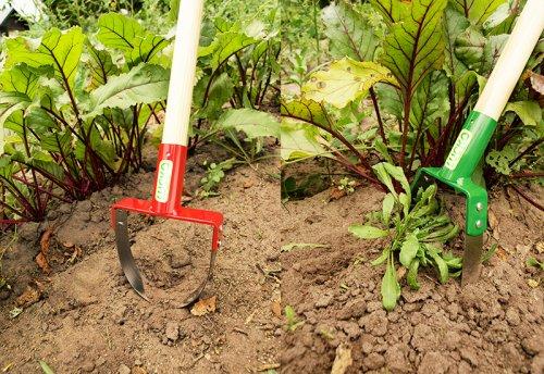 Борьба с сорняками на огороде: избавляемся от самых «живучих»