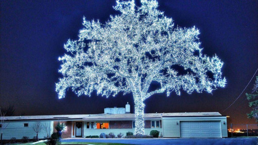 Украсить деревья к Новому Году помогут гирлянды