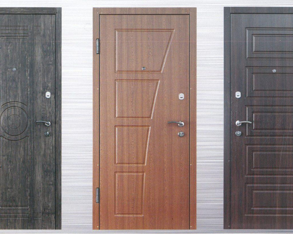 Многообразие входных дверей