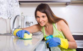 Чистота в доме — залог уюта и гармонии в семье