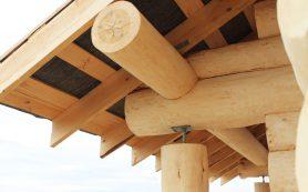 Сосна — лучший материал для строительства деревянного дома