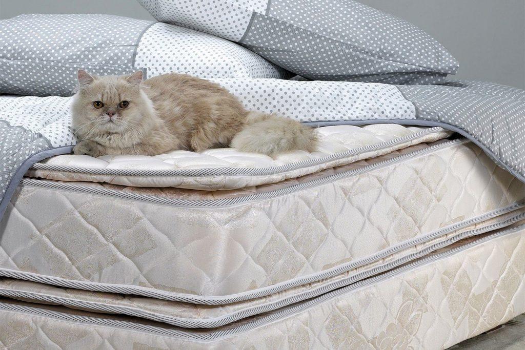 Виды матрасов для кровати: изучаем от А до Я