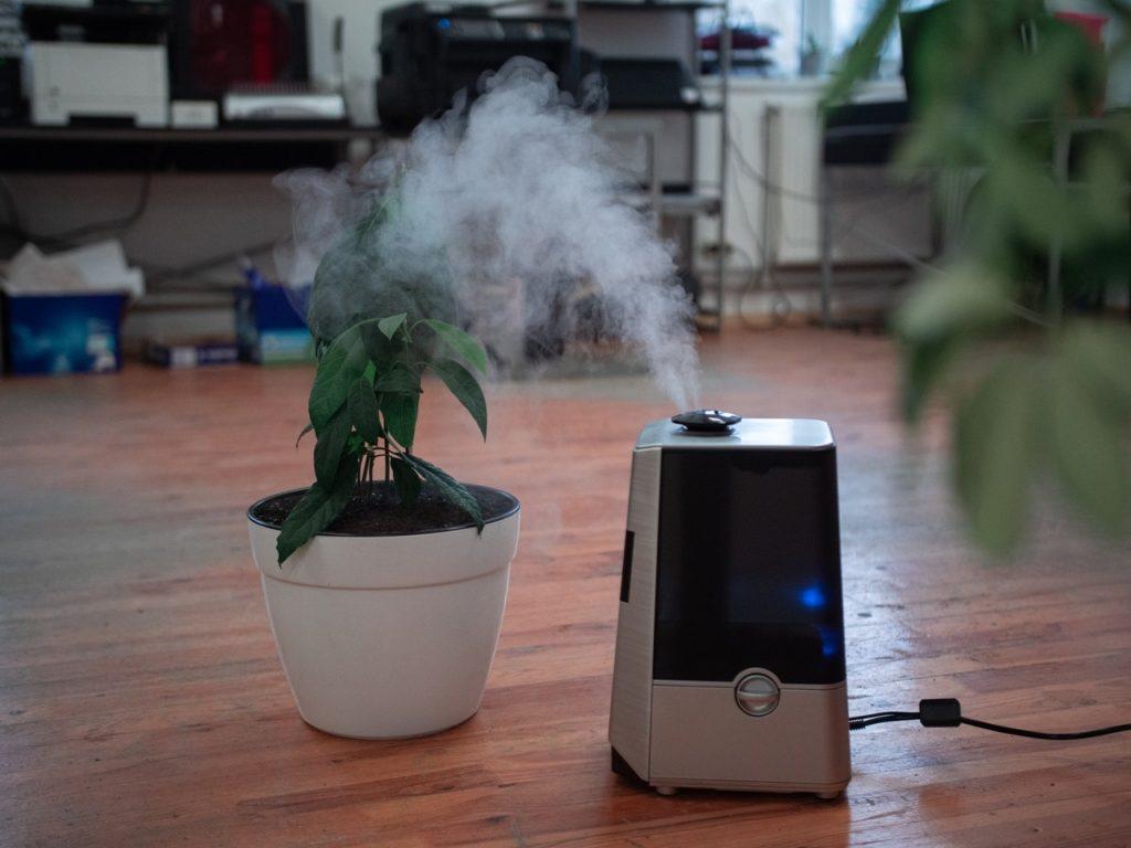 Чем опасен слишком сухой воздух в квартире и что с ним делать