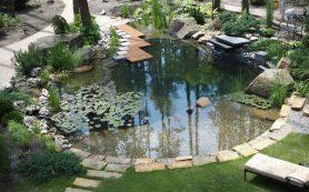 Садовый пруд в обрамлении зелени