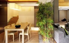 Спросили профи: секреты удачного дизайна узких комнат