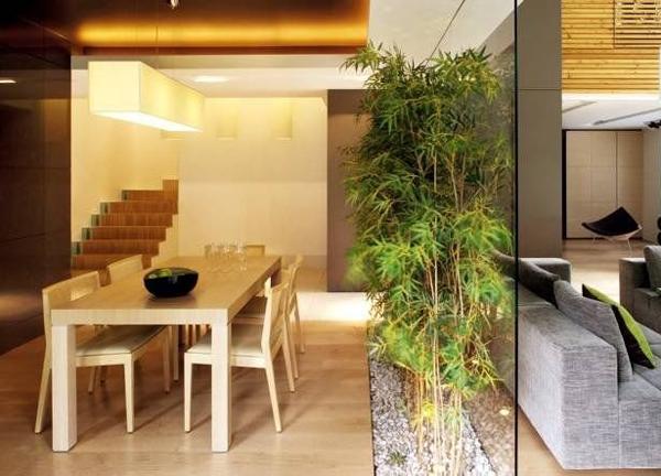 Бамбуковая роща в вашей квартире